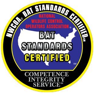 National Wildlife Control Operators Association Bat