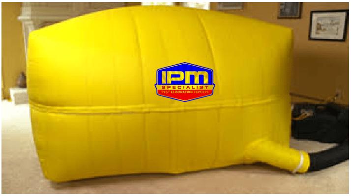 IPM Specialist Service